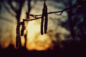 Time Moves On. by this-is-the-life2905