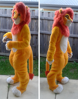 Simba profile shots by HybridCreampuff