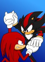Knuckles VS Shadow by Retro-Eternity