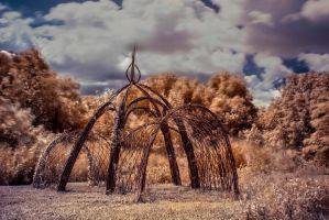 IR Tent by TomZoy
