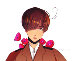 (APH) - Romano S. Italy by Raffyy