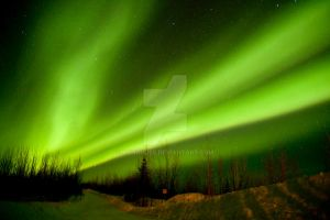 Northern Lights by donahube