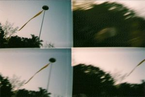 lomo in movement by BrunoCc