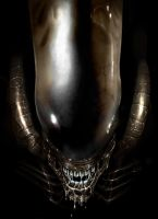 ALIEN 3 by fastleppard