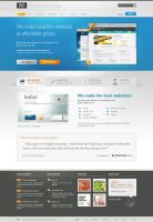 BVD WP Theme by bestofthemeforest