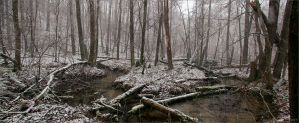 first snow on the stream by pogodinaea