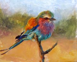 Lilac-breasted Roller by snellynell