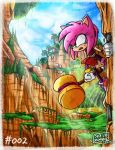 ~ Amy Rose went Boom ~ by SkaJrZombie