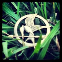 mockingjay in the grass by peacekid4
