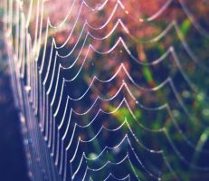 iridescent web by Iridescent-happinesS