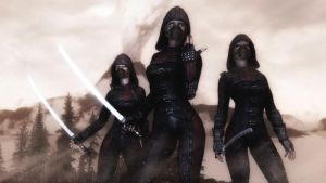 The Assassins by Vicki73