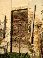Door by martaraff