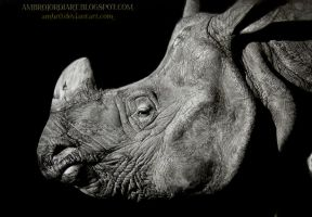 Rhinoceros by AmBr0