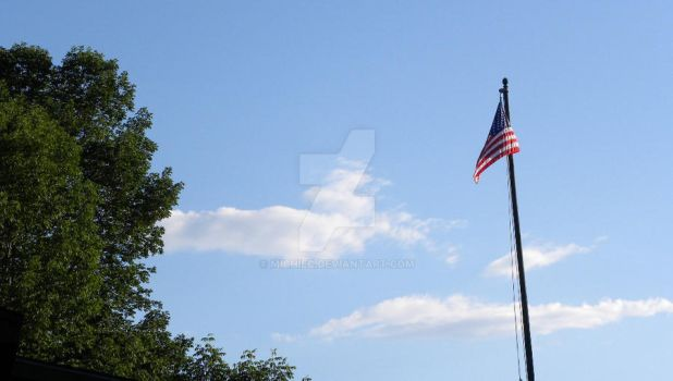American Flag by michiec