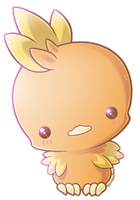Mini Torchic by RainbowRose912