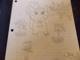 .:Pachirisu:. by SonicPokemonPrincess