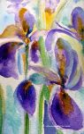 IRISES  AND GOLD by GeaAusten