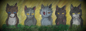 Elders from ThunderClan by Ewcorka