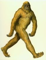 Bigfoot by ColbyBluth