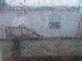 Through a window, wet with rain. by ohallford