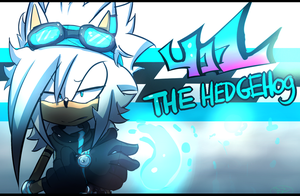 .:401 The Hedgehog:. ( re-Degin) by Zubwayori