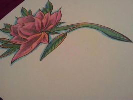 Damien Friesz inspired rose by heartsandanchors