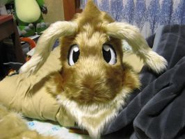 Dragonite fursuit head by ensiryu