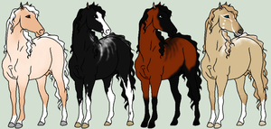 Dew Gene Horse Adopts WINNERS by The-Halfway-House