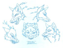 Bran Expressions by Kitsune--Rin