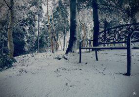 Cold Winter by Ariane-S