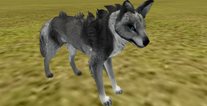 Grey wolf preset adopt (closed) by WinterSnowLeopard