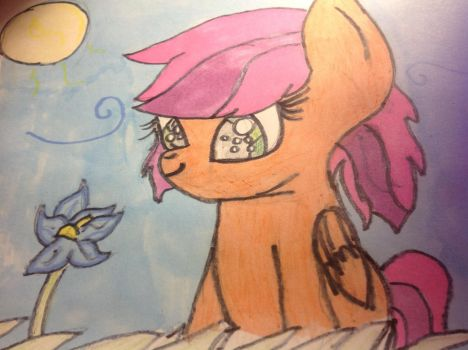 Amber Blossom (Request) by ShimmeringDaylight