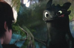 Toothless Smile Animated GIF by FayetheBookWolf