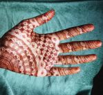 Henna 6 - Without Paste by Exillior