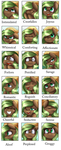 Emotions meme:  Vale Sylva by pridark