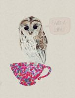 Owl have a cuppa by Zikarra