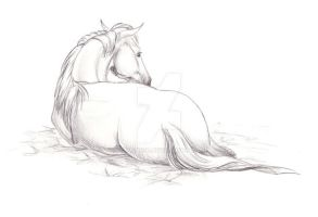 Resting Horse by lunatteo