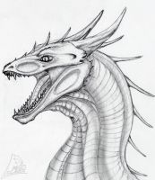 dragon head by Beast3