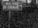To the Grave by Xs9nake