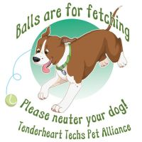 Balls are for fetching by novablue