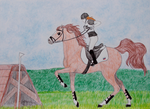 Cross-country equestrianism by Laurindie