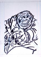 Panel of the Ape! by javierhernandez