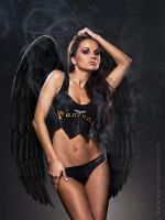 The Devil Angel by messtor