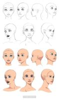 Disney style heads - angles by Precia-T
