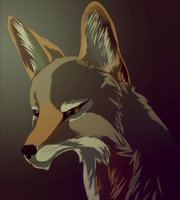 Jackal by Earldense