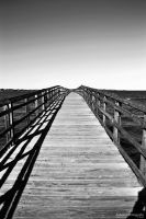 Pier in Black and White by lovewrecked09