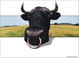 Photomanipulated cow by smokejaguar