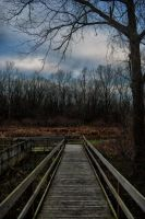 November Boardwalk by redwolf518