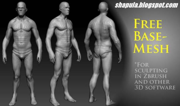 Shapula Free Base Mesh for Sculpting by Shapula