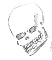 Skull Study by Jester-of-the-Clown
